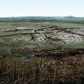 Manure Lagoon
