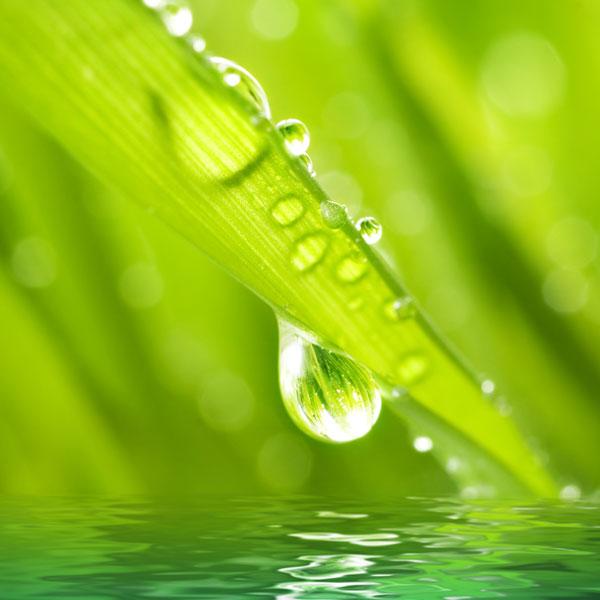 NOAH Healthy Water